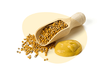 Mustard is listed as one of the 14 major food allergens
