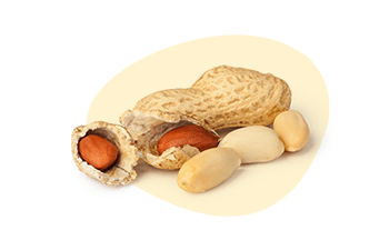 Peanuts is listed as one of the 14 major food allergens